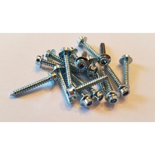 Essential small Screw Assortment